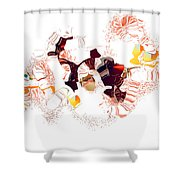 No. 704 Shower Curtain