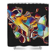 No. 724 Shower Curtain