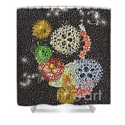 No. 784 Shower Curtain