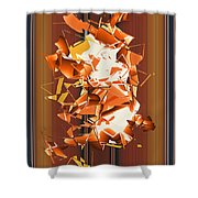 No. 787 Shower Curtain