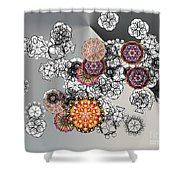 No. 825 Shower Curtain