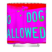 No Dogs Allowed Shower Curtain