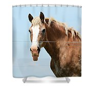 No Manners Shower Curtain