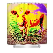 No Mercy For The Cow, They Say, But Why Not  Shower Curtain