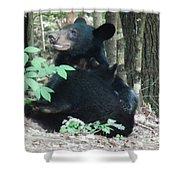 Bear - Cubs - Mother Nursing Shower Curtain