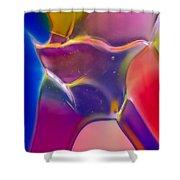 Noble Colors Shower Curtain