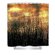 Noble Grasses Shower Curtain