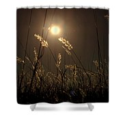 Nocturnal Glow Shower Curtain