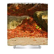 Nome Land Shower Curtain