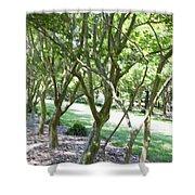 Norfolk Botanical Garden 7 Shower Curtain
