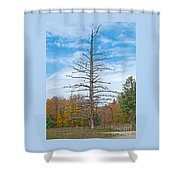 North Country Byway Shower Curtain