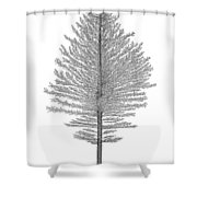 North Of America Shower Curtain