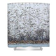 Northbound Shower Curtain