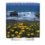 Northern California Coast Shower Curtain