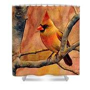 Northern Cardinal II Shower Curtain