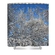 Northern Colors Shower Curtain