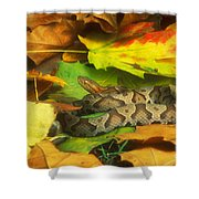 Northern Copperhead Camouflaged Shower Curtain