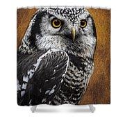 Northern Hawk Owl Shower Curtain