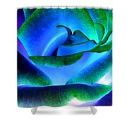 Northern Lights Rose Shower Curtain