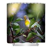 Northern Parula 9308-002 Shower Curtain