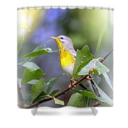 Northern Parula 9309-005 Shower Curtain