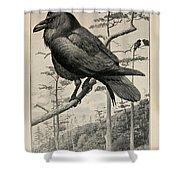 Northern Raven Shower Curtain
