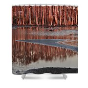 Northshore Cypress Shower Curtain