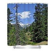 Northwest Frontier Shower Curtain