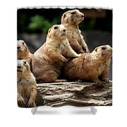 Nosey Bodies Shower Curtain