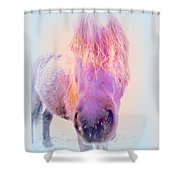I'm The Famous Winter Nosy Spirit But I Don't Care  Shower Curtain by Hilde Widerberg