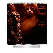 Not A Creature Was Stirring... Shower Curtain