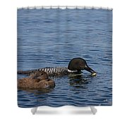 Not Hungry Shower Curtain