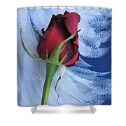 Not Just Another Rose Photograph Art Shower Curtain