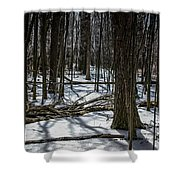 Not Spring Yet Shower Curtain