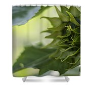 Not Sunny Yet Shower Curtain