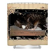 Not Tonight Dear... - Featured In Comfortable Art Group Shower Curtain