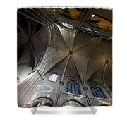 Notre Dame Ceiling South Shower Curtain