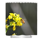 Nourished By Nature Shower Curtain