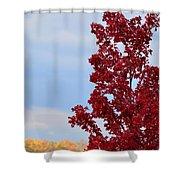 November Red Shower Curtain