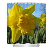 Now That's A Daffodil Shower Curtain