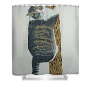 Now What??? Shower Curtain