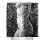 Nude Female Torso Drawings 6 Shower Curtain