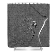 Nude Girl Breast And Nipple 1277.03 Shower Curtain