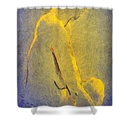 Nude Iv Shower Curtain