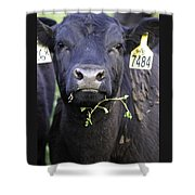Number 7484 Shower Curtain