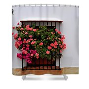 Number 9 - Geraniums In The Window Shower Curtain