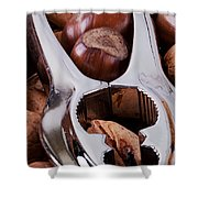 Nutcracker With Nuts Closeup Shower Curtain