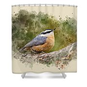 Nuthatch Watercolor Art Shower Curtain