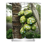 Nutty Tourists Shower Curtain