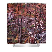 Suzie's Creek Shower Curtain